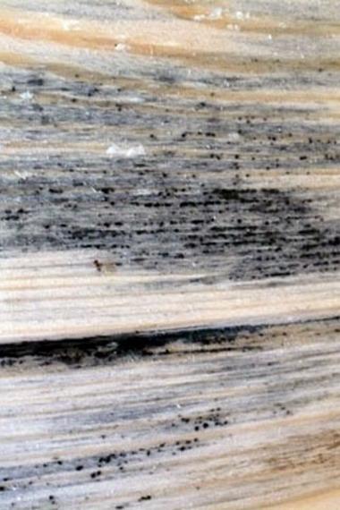 Лента герметизации швов ткани